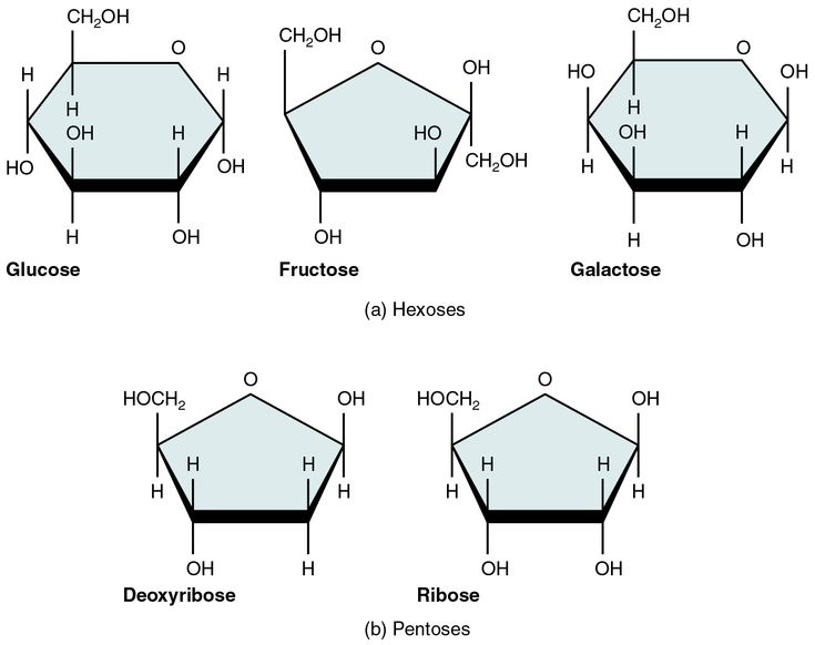 9 best General Chemistry images on Pinterest Chemistry - molecular geometry chart
