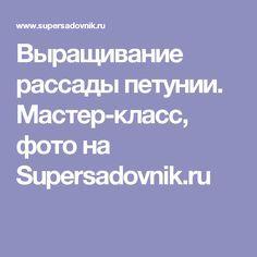 Выращивание рассады петунии. Мастер-класс, фото на Supersadovnik.ru