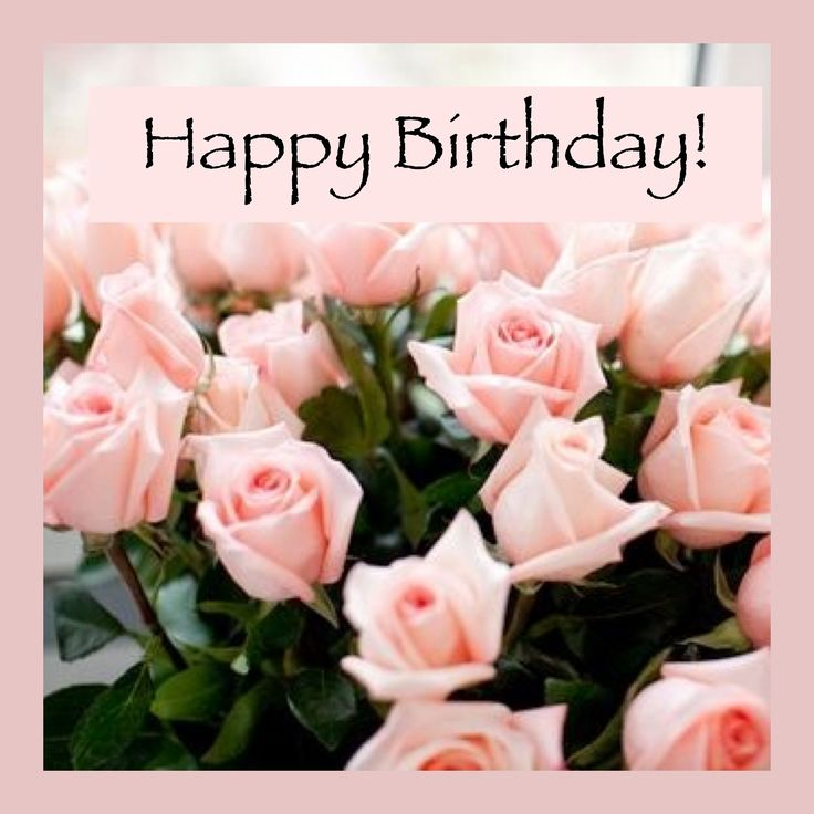 Funny Birthday Wishes Pink: Flowers, Rose Et Pink