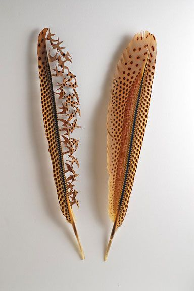 Sculpted feathers by Chris Maynard