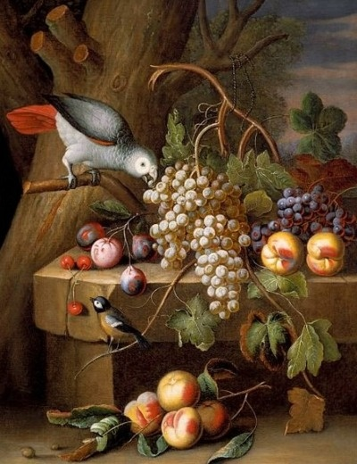 Tobias Stranover  Still Life with Fruit and Birds  18th century