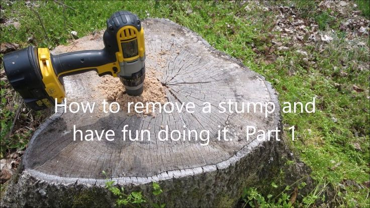 The easy way to remove tree stumps. Part 1 of a 3 part
