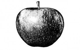 Apple Now Owens the Beatles' Apple Corps Logo