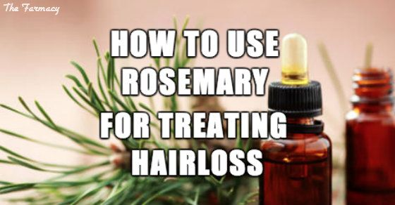How to Use Rosemary for Treating Hair Loss : Rosemary essential oil is a natural way to stimulate hair growth and hair health. Follow these simple tips for more lustrous locks. There can be many reasons why we suffer from hair loss – whether it is thinning hair or more severe loss such as alopecia. It can have a profound effect on some people's confidence. Generally alopecia is more common in men, but there can be many contributory factors including hormonal imbalances, nutritional...
