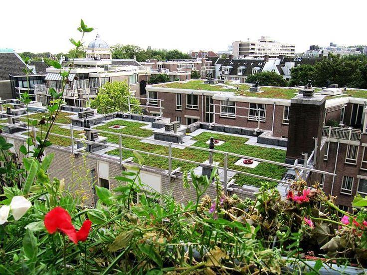 La capitale danoise devient la seconde ville au monde à imposer la végétalisation des toits sur les constructions neuves (la première étant la ville de Toronto, au Canada).