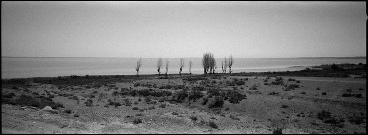 Landscapeland : Jan Dyntera