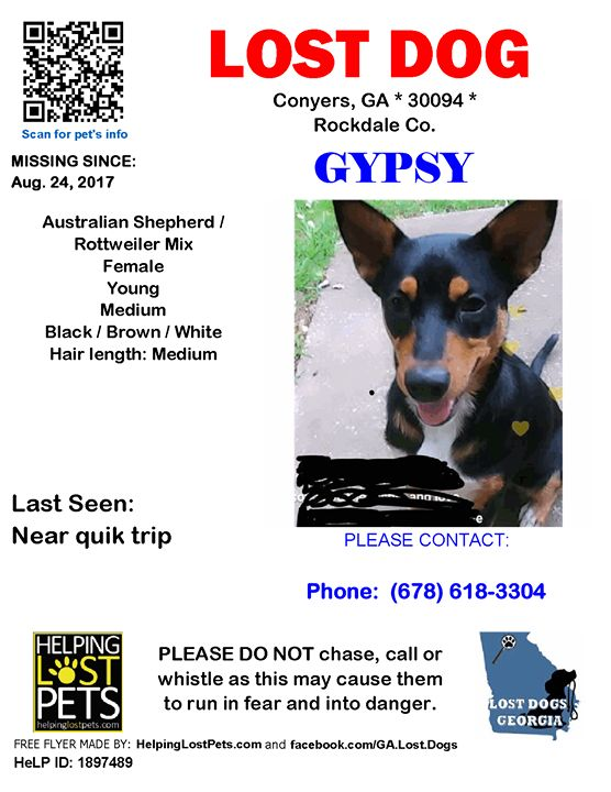 Lost Dog - Conyers GA - Aug.24 2017 Closest Intersection: Near Quik Trip County: Rockdale - TAKEN WHEN HOUSE WAS BROKEN INTO - PLEASE SHARE  #LOSTDOG #Gypsy #Conyers (Near quik trip) #GA 30094 #Rockdale Co.  #Dog 08-24-2017! Female #Australian Shepherd / Rottweiler Mix Black / Brown / White/My pet was taken after my home was broke into  Phone: (678) 618-3304  More Info Photos and to Contact: http://ift.tt/2w68Y64  To see this pets location on the HelpingLostPets Map: http://ift.tt/2xkZwui…
