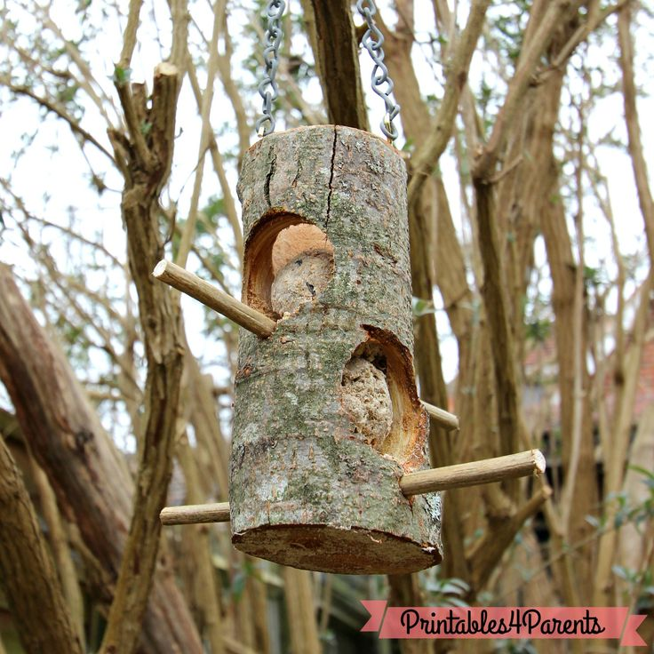 Bird feeders are a great way of welcoming wildlife into your garden and helping them to find food