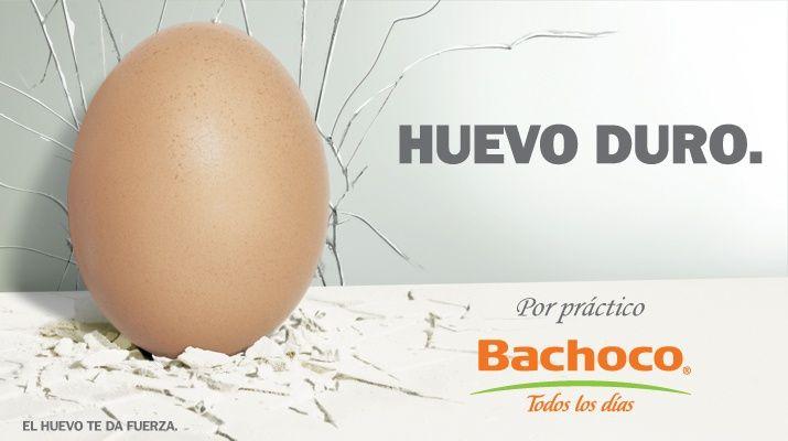 anuncios espectaculares bachoco - Google Search