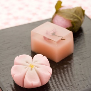 cherry blossoms wagashi