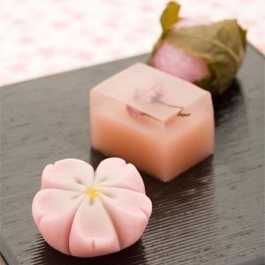 cherry blossoms wagashi