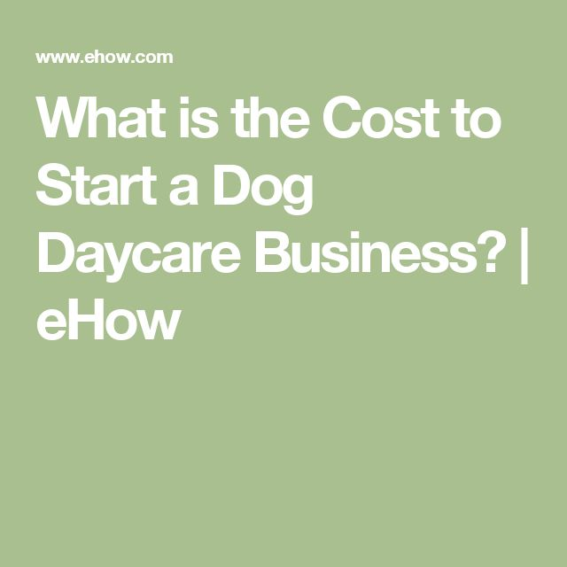 what is the cost to start a dog daycare business