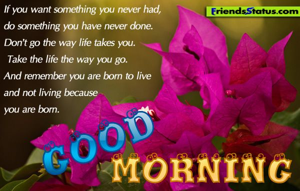 Good Morning America Quotes Images : Good morning quotes do something