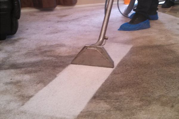 Back 2 New Carpet Cleaning Adelaide With Images Professional Carpet Cleaning How To Clean Carpet Carpet Cleaning Service
