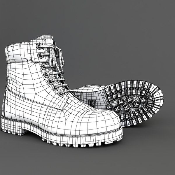 shoe tomology - Google 搜尋