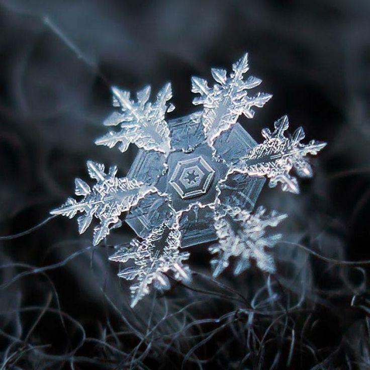 Indo dormir com a imagem de um floco de neve ampliado milhões de vezes e me inspirando para o nosso próximo evento ��❤️#letitgo #baudanana #frozen #disneyprincess #elsa #anna #festapersonalizada #festasinfantis #snowflakes #lindo #awesome #amazing #boanoite #soumaisbaudanana http://misstagram.com/ipost/1541751125785636994/?code=BVlZnr4gvCC
