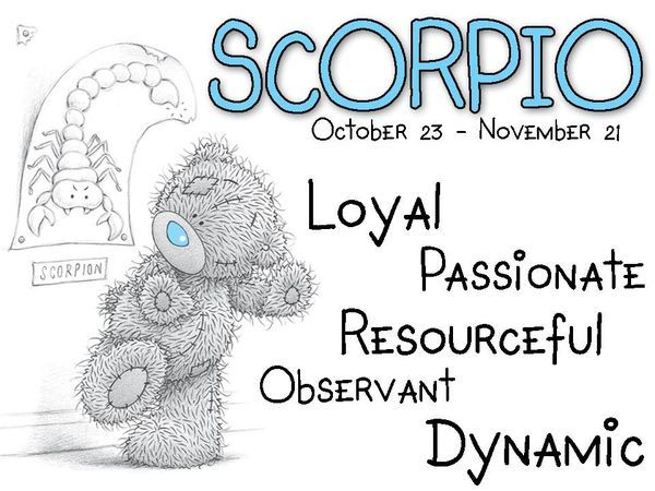 Tatty Teddy / Zodiac October 23 - November 21 / Scorpio: Loyal, passionate, resourceful, observant, dynamic.