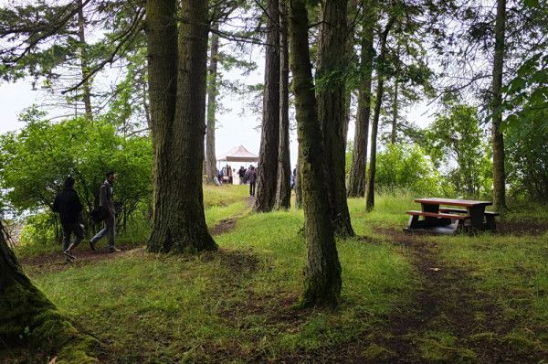 Romantic serendipity at Ruckle Park : a peek-a-boo wedding view between the trees