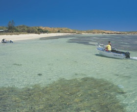 Penguin Island, Western Australia. Take a ferry from Shoalwater/Rockingham over to the island and spend some time hanging out with our local penguins. There are many tour options including feeding the penguins back at the Discovery Centre, and a 45 minute glass bottom ferry ride around the island. I can't wait to do this as its another things i've never done! $35 for 2 adults