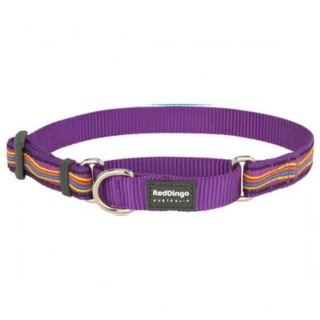 Red Dingo Dreamstream Purple Medium Martingale Collar - Red Dingo dog collar Red Dingo Dog Collar Medium - globaldogshop.com