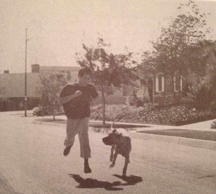 Bruce-Lee-Dog-Run.jpg (1280×1148)