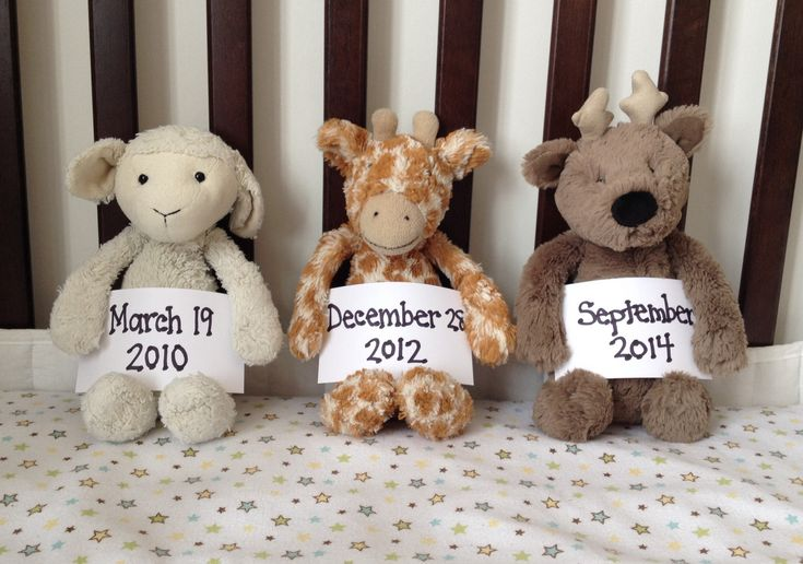 This is how we announced that we were having a third. The lamb and giraffe belong to our first two children and the reindeer is for the new baby (when it arrives!!).