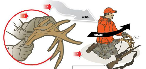 how to make rattling antlers