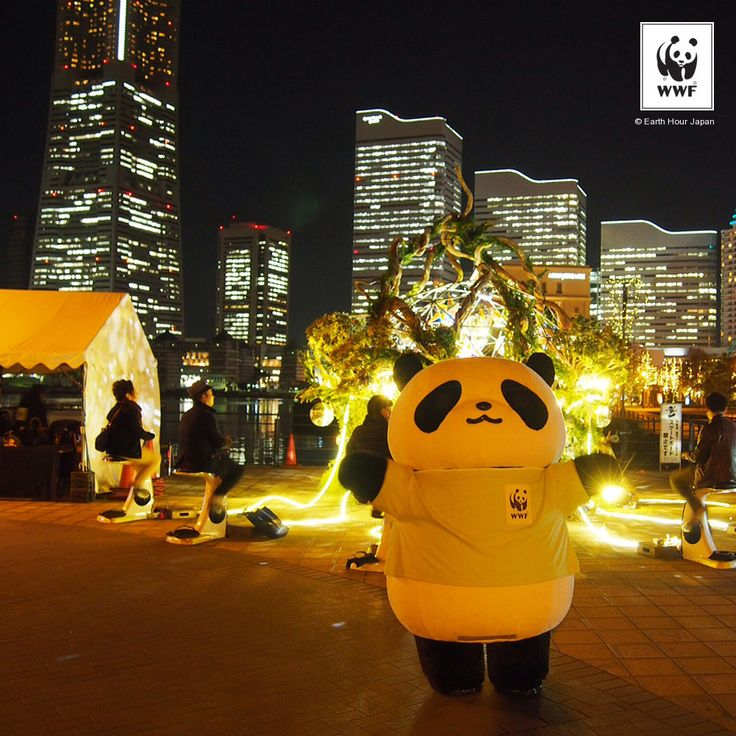 From a symbolic lights off in Sydney in 2007 to a powerful movement spanning more than 7000 cities, #EarthHour has come a long way and its because of you!  A HUGE thank you for making it as spectacular as always!
