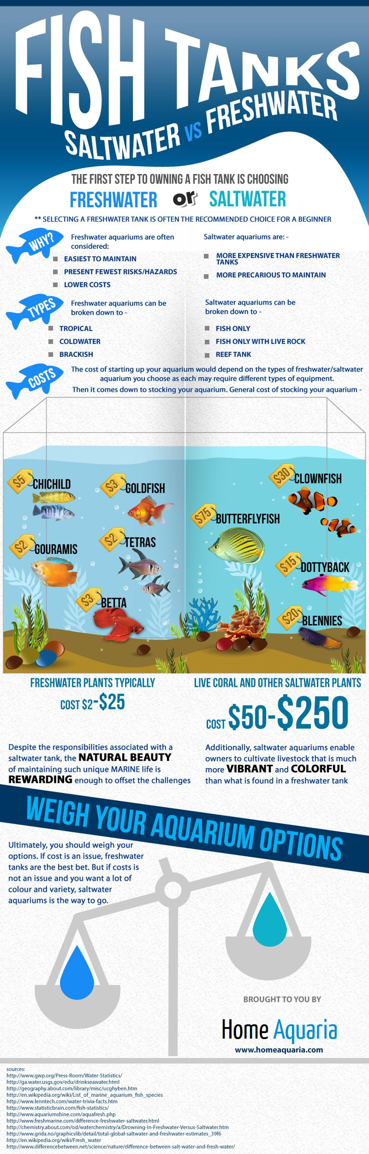 Infographic: Freshwater vs Saltwater Tank by homeaquaria #Infographic #Fish_Tank