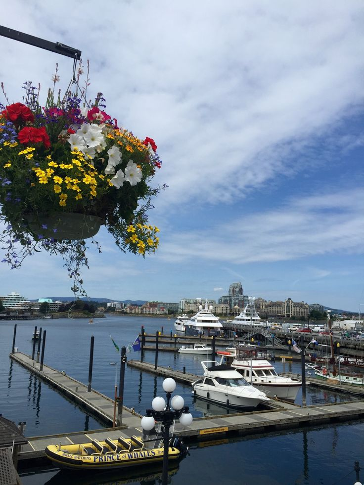 Inner Harbour Docks in Victoria, BC