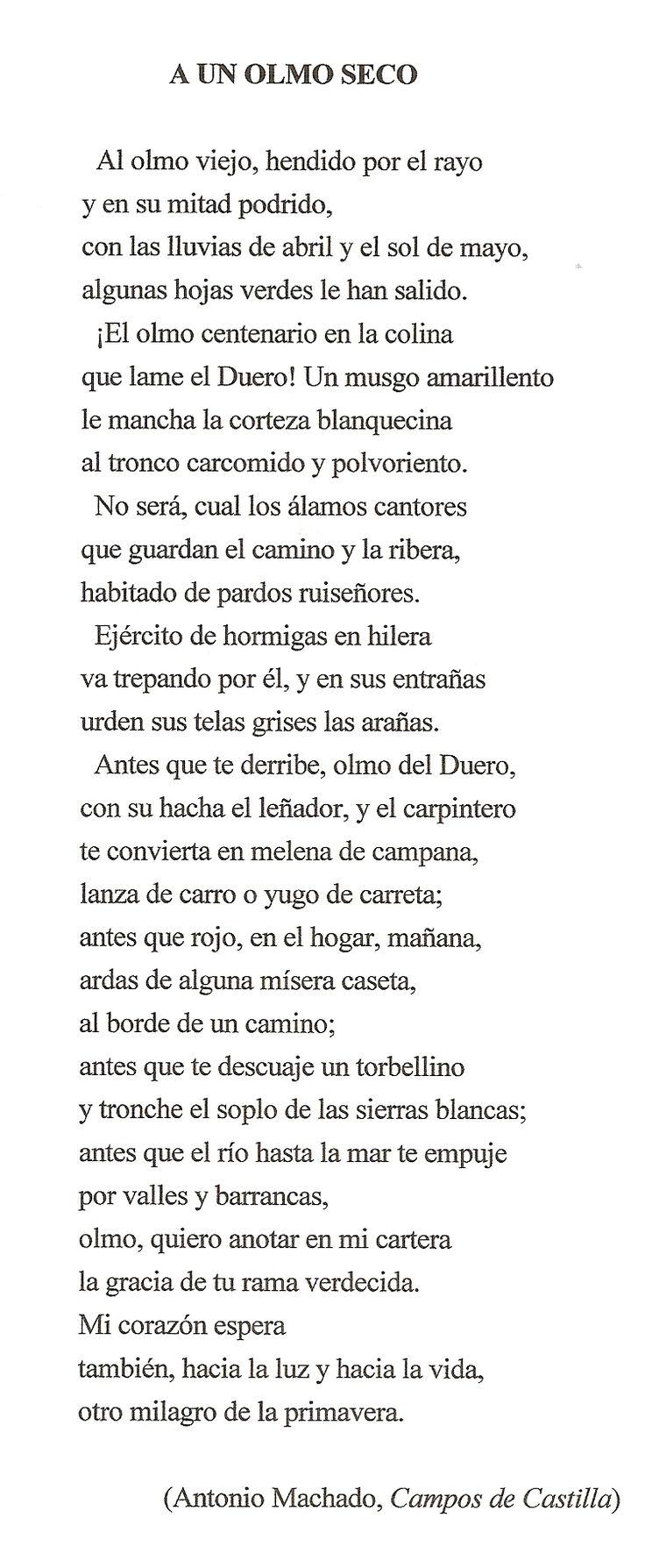 """""""A un olmo seco"""" poema de Antonio Machado"""