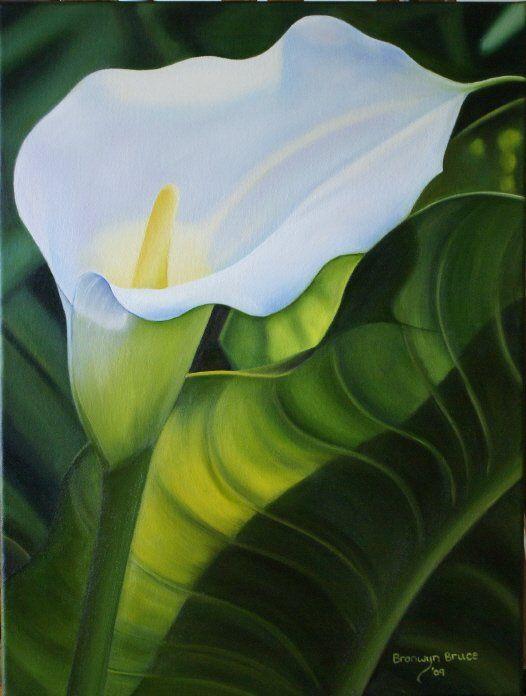 Lily; oil on canvas. Artist: Bronwyn Bruce