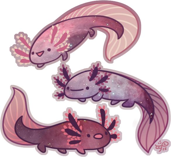 Space Axolotl by Galadnilien.deviantart.com on @DeviantArt