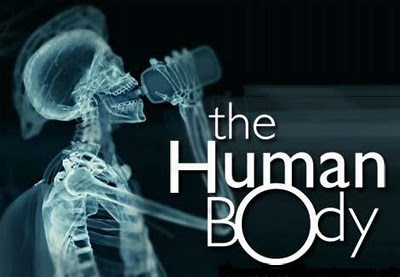 100 weird facts about the human body