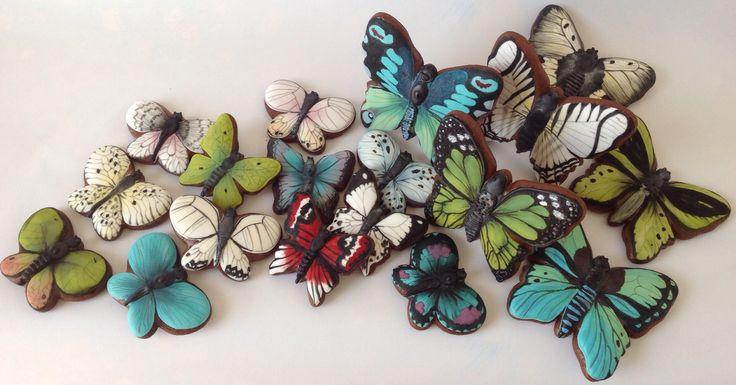 gingerbread butterfly - pernikové motýle