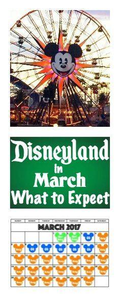 Six things to consider when planning a trip to Disneyland including a Disneyland Crowd Calendar, Ride Closures, Parks Hours, Average Temperature, Packing List, Ticket Savings. Disneyland Tips. Disneyland Secrets.