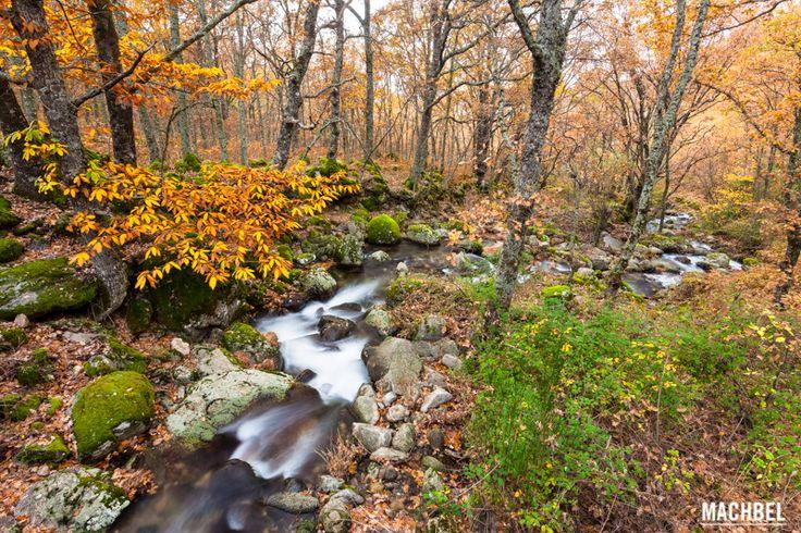 Río del Valle del Ambroz Valle del Ambroz en Extremadura España by machbel 2