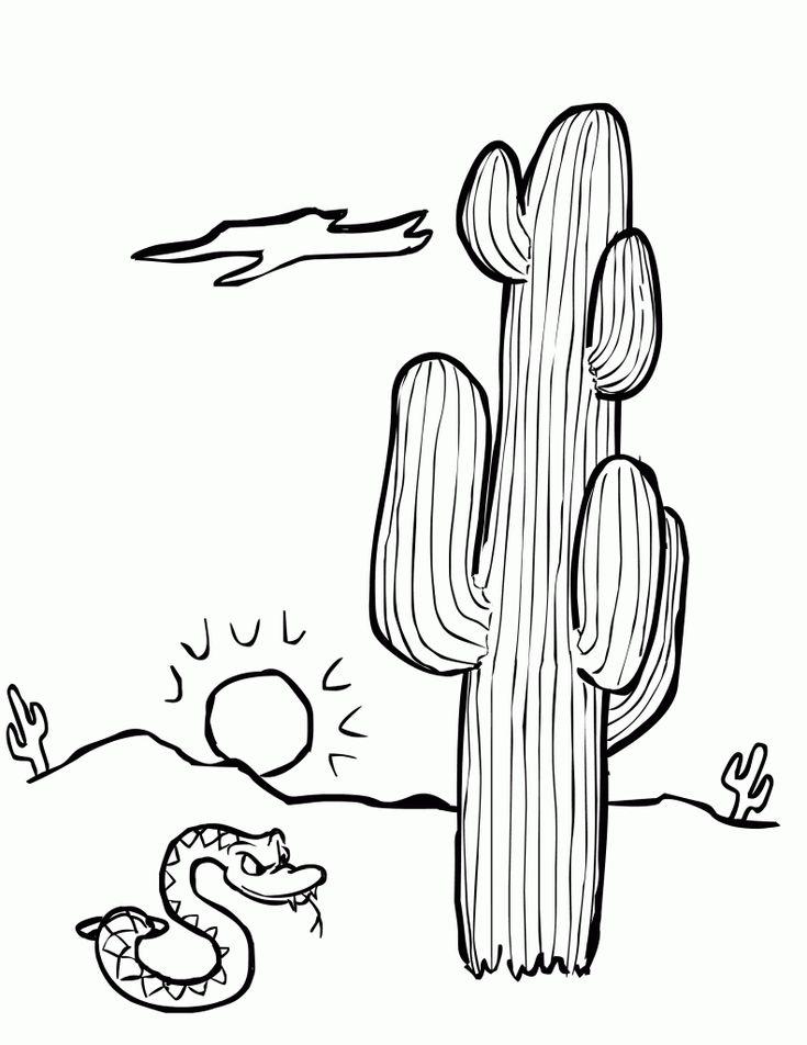 Mejores 7 imágenes de cactus en Pinterest | Cactus, Hojas para ...