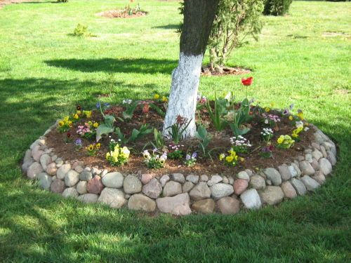 Best Tree Ring Garden Bed Images On Pinterest Gardening