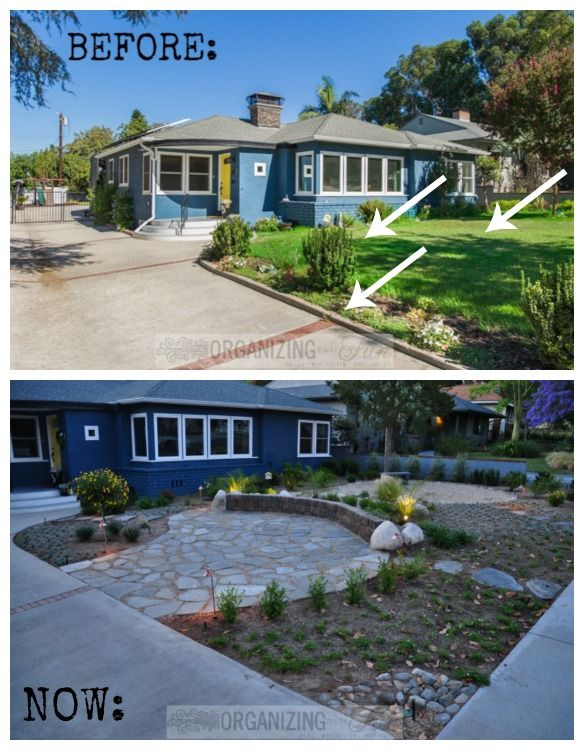 Front Yard Patio Ideas Part - 31: Native, Drought Tolerant Front Yard Thatu0027s GORGEOUS! | Toilet, Artificial  Plants And Front Gardens