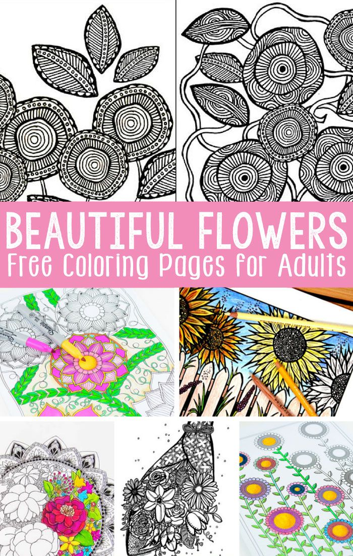 148 best images about Grown Up Colouring on Pinterest