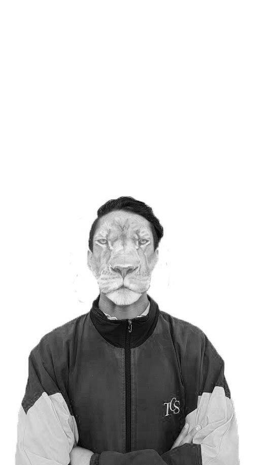 LION | SHEEPYEDITS