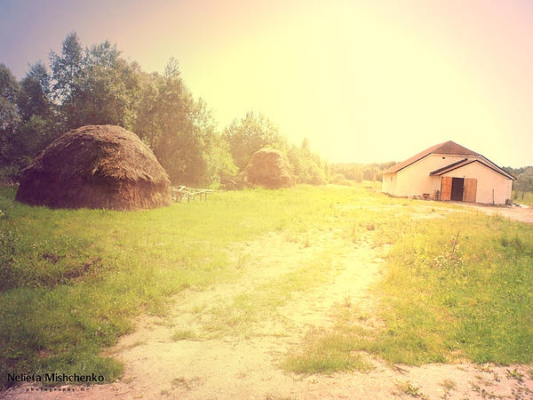 The life on a farm. This one was taken at a monastery in Slavsk,Russia.
