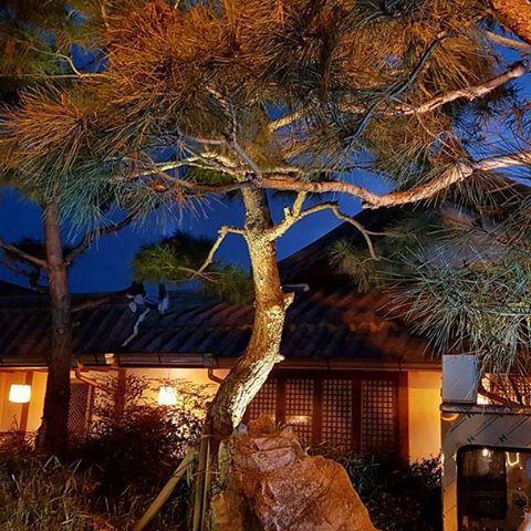 Instagram【james_wanderlust】さんの写真をピンしています。 《. #jeonjucity #jeonjuhanokvillage #nightscape #nightview #全州韓屋村 #伝統家屋 #夜景 #景色 #korea #travelkorea #koreatrip #travelasia #asiatrip #여행 #여행스타그램 #旅行 #旅游 #travel #instatravel #traveling #instago #instatravelgram #travelgram #wanderlust #landscape #travelpics #travelphoto #traveler #travelphotography #igtravel .》