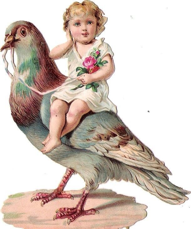 Oblaten Glanzbild scrap die cut chromo Kind kid child Taube dove pigeon riding