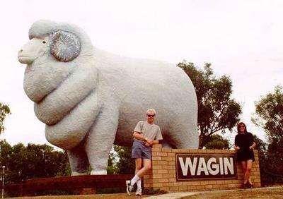Big Merino, Goulburn, NSW