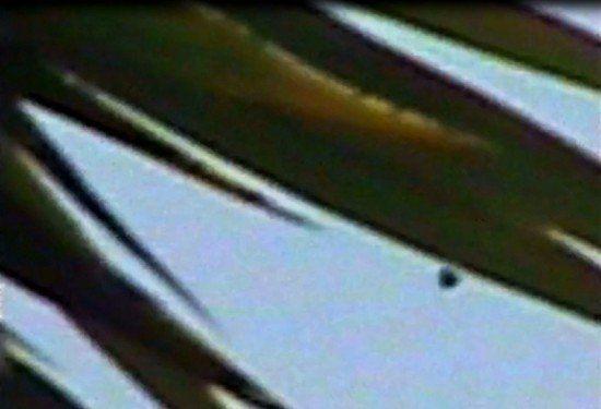 Straordinario avvistamento UFO a Roma. Esagerato. Così alcuni definiscono l'ufo file di Roma, frazione Dragona, registrato con tanto di video con una vicin