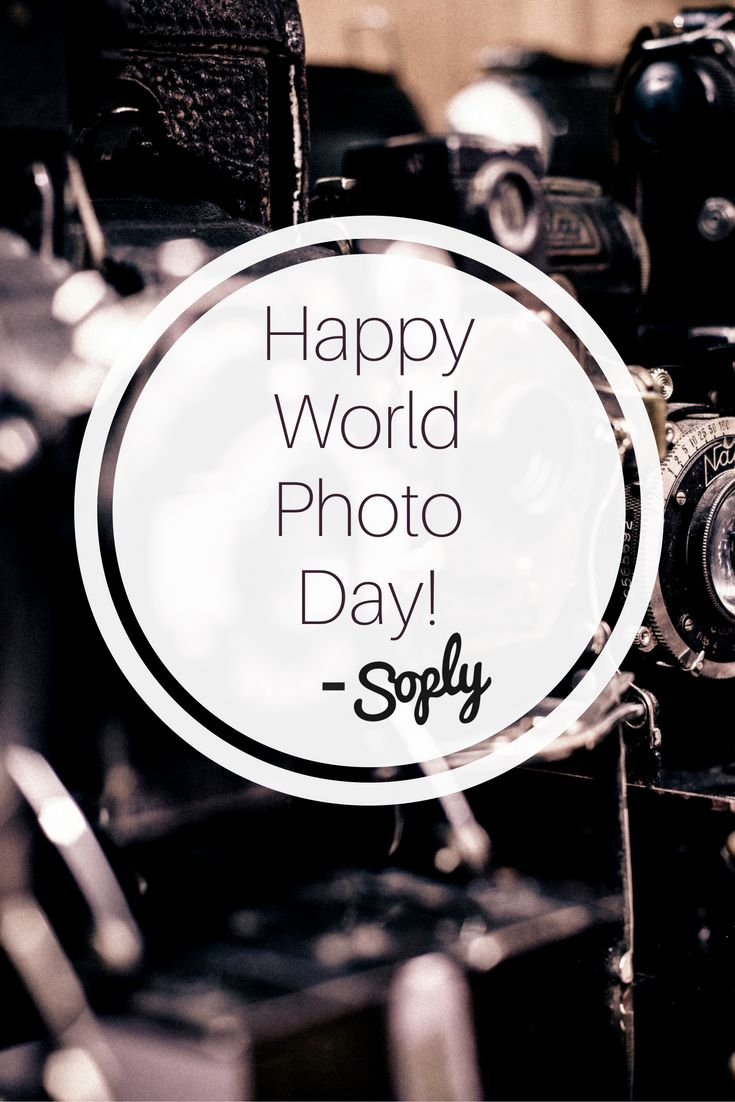 Happy World Photo Day from our Team here at Soply to all of our talented…