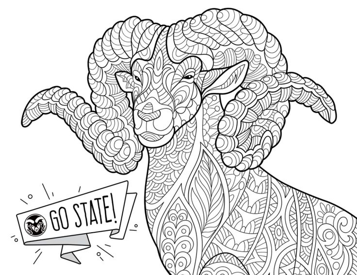 CAM the Ram coloring page perfect for a study break.