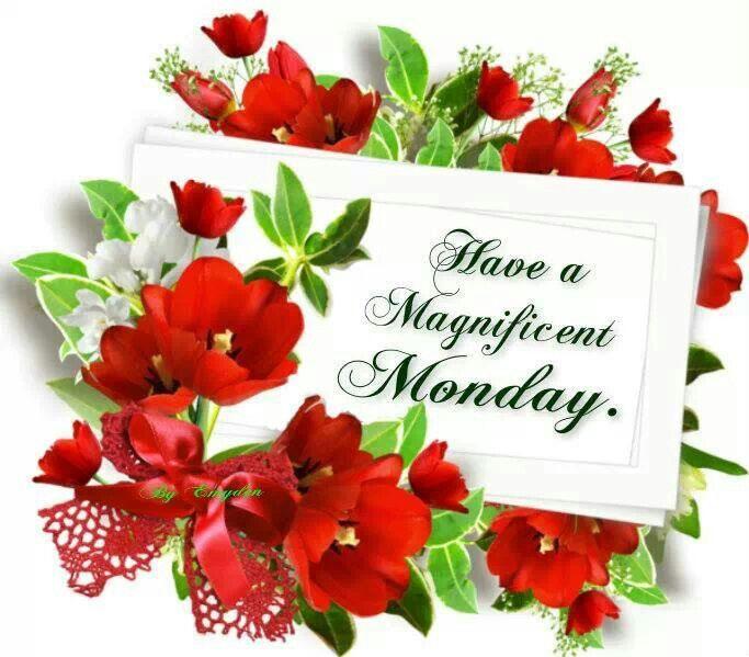 ❤️❤️❤️Monday Blessings!❤️❤️❤️